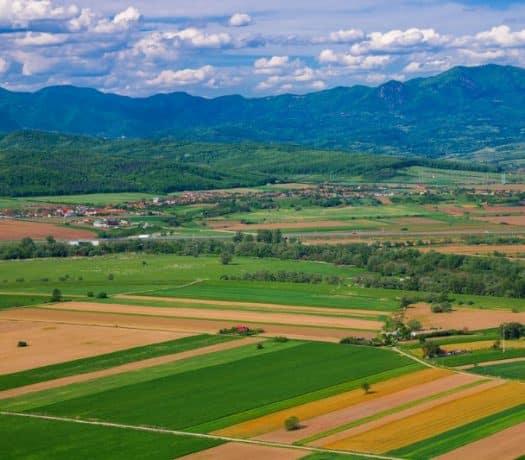 Agriculture en Roumanie