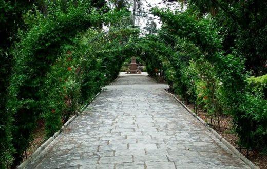 Les jardins Botaniques de San Anton