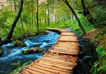 Aménagement paysager en Croatie