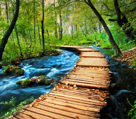 Le parc de Plitvice en Croatie