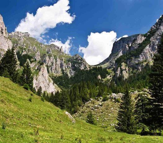Paysage montagne Roumanie