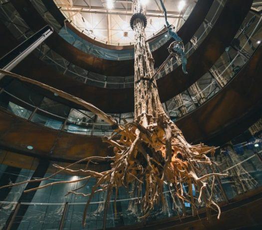 Musée de la Science - Barcelone