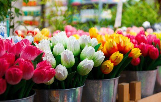 Le marché aux fleurs (Bloemenmarkt)
