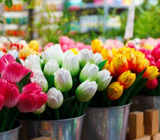 Des tulipes à Bloemenmarkt, Amsterdam