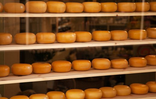 Visite d'une fromagerie traditionnelle aux Pays-Bas