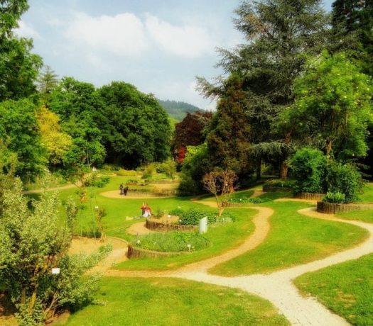 Parc à Fribourg