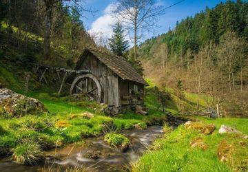Forêt-Noire : agriculture et environnement
