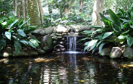 Jardin botanique Malaga