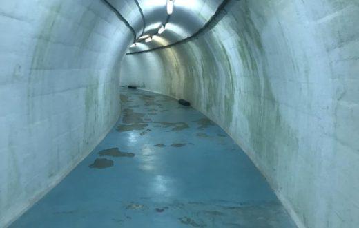 Bunker de Tito